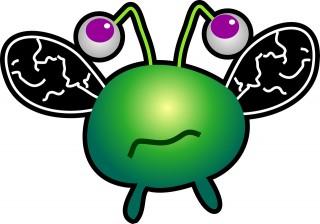 bug-268543_1280