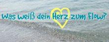 flow-t-herz-2