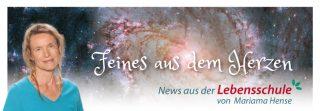 newsletter-lebensschule_02
