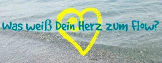herzflow-3